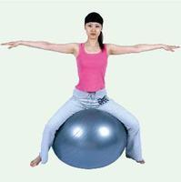 Anti-burst 95CM Gym Home Exercise Fitness Balance Pilates Aerobic Yoga Ball Fitness Ball Exercise Ball Gym Ball With Air Pump
