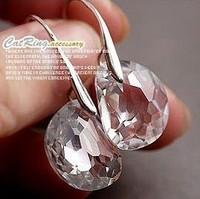 Brief Shine Egg Shape Crystal Earrings 2E258
