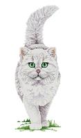 14ct White cloth Cotton Threads simple cross stitch embroidery kits Cat Cartoon Animal European Home Decor Handmade Needlework