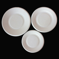 13g whellote child diy handmade plate variegating white tray