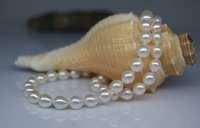 Natural freshwater pearl necklaces and white water droplets