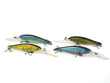 bass fishing minnows price