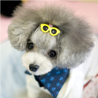 Free shipping Pet Supplies sunglasses hairpin Dog hair clip Pet head flower pet accessories  5pcs/lot