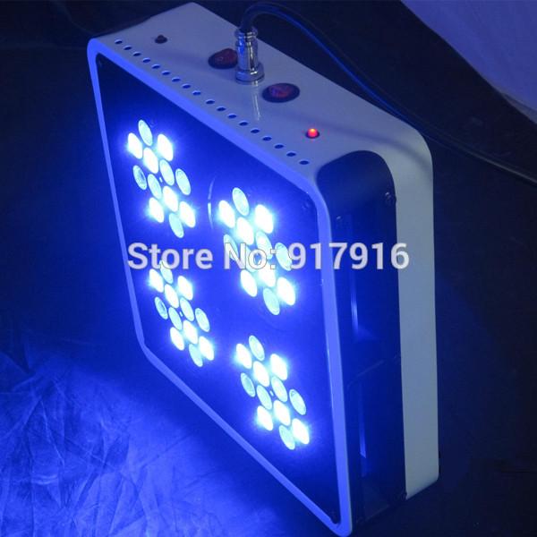 4pcs/lot White 12000K Blue 460nm LED Aquarium Lights 144W (48*3W) Apollo 4 Best For Freshwater Aquarium(China (Mainland))