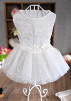 Pet Clothes White Wedding Dress, Dog Skirt New Spring And Summer