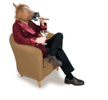 popular horse head