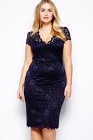 I-Top  New 2014 Sexy dress Navy Blue Scalloped V-neck Lace Dress Novelty Mesh Midi Dress LC6415P Plus Size XXL