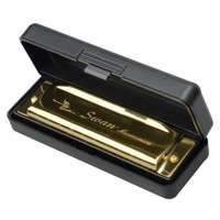 Brand New Golden Swan Metal 10 Holes Key Of G Harmonica with Case
