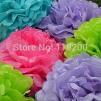 Free Shipping  20 pcs 25cm(10inches) Tissue Paper Pom Poms Wedding, Birthday, Baby shower, Nurseries decoration