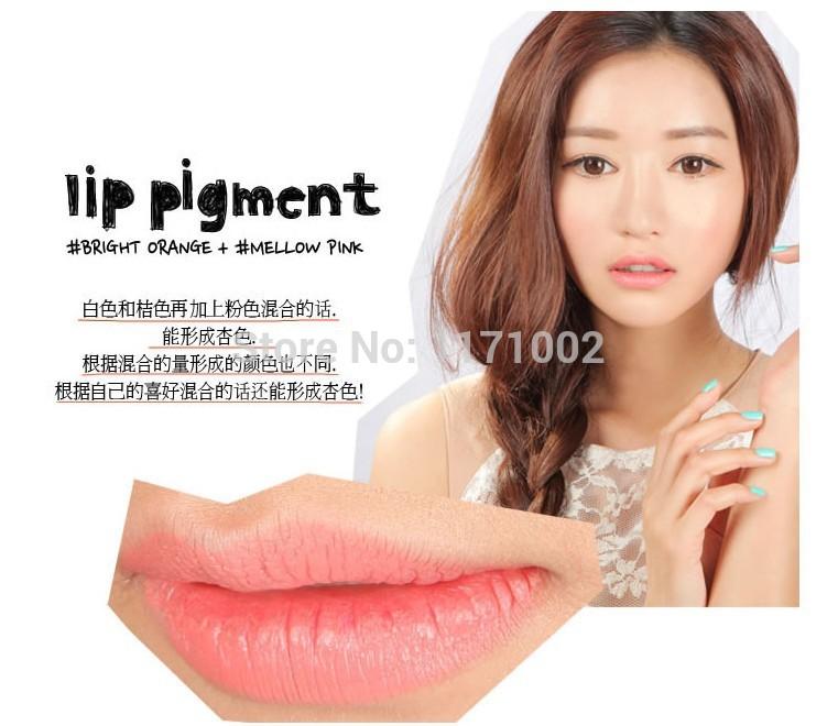 High quality lip pigment Plumper colorful lipstick DIY mixed colors Lip Gloss Cream Make up(China (Mainland))