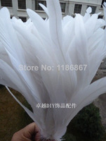 30-35cm/14-16inch pure white  Rooster tail featherFor Costume&Mask Coque Rooster Tail Feathers 100pcs/lot P181