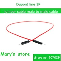 post free 100pcs/lot DuPont cable 1p Male to Male 30cm  jumper male - male cable