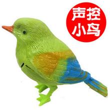 popular control bird