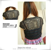 New 2014 sping and summer Fashion short lace t shirt  women Embroidery Floral Crochet tops  sexy Women clothes