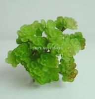 Free Shipping 12cm Silk Desert Flower Pick DIY Decoration Flower Artificial Succulent