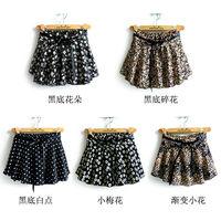 Spring New 2014 Skirts Womens Tops For Women Winter Derss Pleated Chiffon Skirt Saias Femininas Fashion Skirt Print Female Skirt