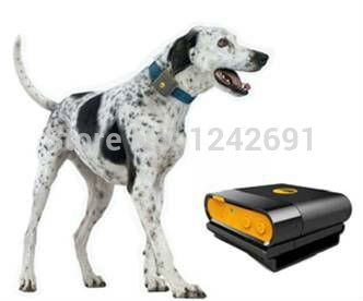 Images Long Distance Calling Cards additionally 1875091775 also Pin Friend also Microchipping besides Images Cell Phone Satellite. on cat gps tracking chip