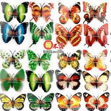 butterfly magnet price