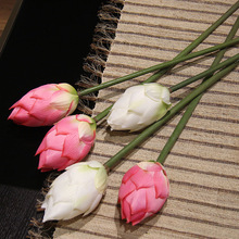 artificial water lily promotion