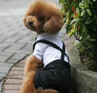 Puppy  Pet Dog Suit , Summer Shirt Clothes For Dog Cat ,Pet  Clothes