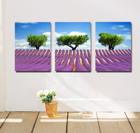 Frameless,Print on canvas,Lavender ,3pieces/ set,modern wall art,flower oil painitng, free shipping via china post