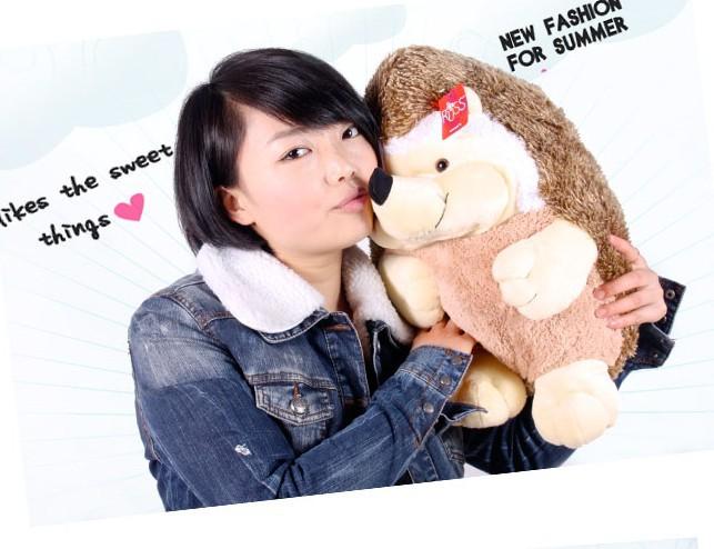 stuffed animal plush 45cm cute hedgehog plush toy w842(China (Mainland))