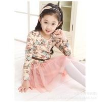 Kids Girls Spring Children's Long Sleeved Floral tutu Dress For Girls