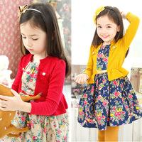 Kids Clothes Long-Sleeved Girl Dress Spring 2014 Floral Girl Dresses