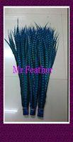 Free shipping 50pcs Turquoise Blue Pheasant Tail Feather 110-120cm lady amhurst pheasant tail Feathers For carnival
