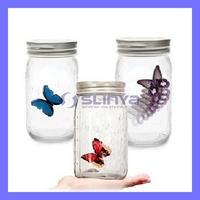 4 Colors Butterfly Jar Butterfly Bottle