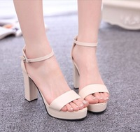 Women sandals! New 2014 female sandals high thick heel platform sexy women's shoes open toe,6colors,size(34-39),good quality