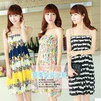 Promotions Summer Dress 2014 Women's Bohemia One-piece Dress Fashion Chiffon Dress Strap Casual Girl Beach Dress Multicolor