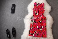 2014 brand new women's spring summer fashion wear European top brand fashion slim dress  elegance party dress T1806