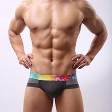 Modal mesh breathable underwear man briefs antibacterial men's low rise briefs M4013(China (Mainland))