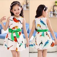 Retail 2014 New summer girls Chiffon bird print dress children Princess dress kid dancing  party girl clothing free shipping