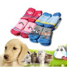 socks for dog promotion
