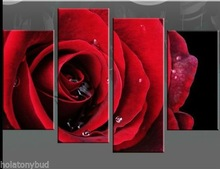 wholesale rose picture
