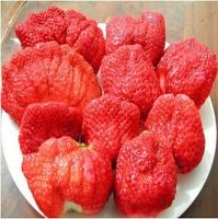Organic Bonsai Fruit 50pcs United States Big strawberry Strawberry SeedsFor DIY Home Garden Fruit Seeds Balcony Seeds