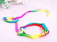 Free Shipping Pet Dog Colorful Leash Dog Harness High Quality Nylon Leash