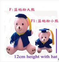 Free shipping,6pcs/lot Plush graduation bear. blue cloth and pink body.3pcs of 17cm big and 3pcs of  12cm small bear.