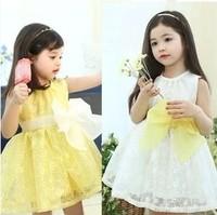 Children clothing wholesale 2014 summer new girl dress a piece fashion Organza princess dress formal dress Free shipping