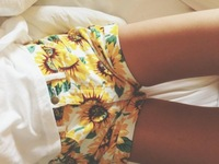 2014 Summer Fashion High Waist Vintage Sunflower Shorts Girl's Denim Shorts Plus European and American style Casual Shorts
