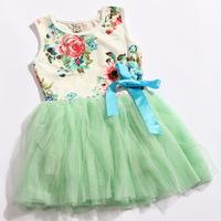 Hot Sale Spring 2014 Summer Children's Clothing  Flower Girls Dresses