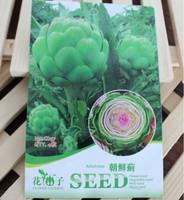1 Pack 4 Seeds Heirloom Healthy Organic Vegetable Artichoke Seeds
