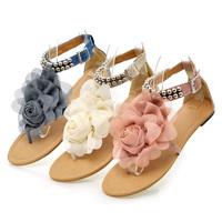 2014 New Fashion Women Sandal Sandals Shoes Woman Platform Sandals Women Beaded Flower Flip-flop Sandals Shoes Pink Blue Beige