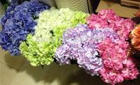 "NEW 42cm/16.54"" Length Five Colors Artificial Silk Flowers Simulation Hydrangea Five Flower Heads Wedding Flower Shoot Props"