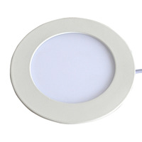 24W  Led Panel Light White Warm White Colors Indoor