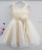 Girl's Paty Dress Summer Sleeveless Diamond Flower Child Dress Official Celebration Children Evening Dress 6pcs/lot
