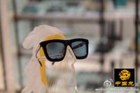 Free shipping women's Anti-UVA Anti-UVB sunglasses 2290 Arrow retro personalized sunglasses