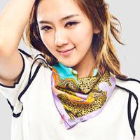 2013 mulberry silk scarf silk scarf silk scarf silk female cashers squareinto